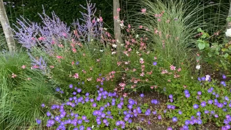 Ken's Weekly Tips – Jobs To Do In The Garden